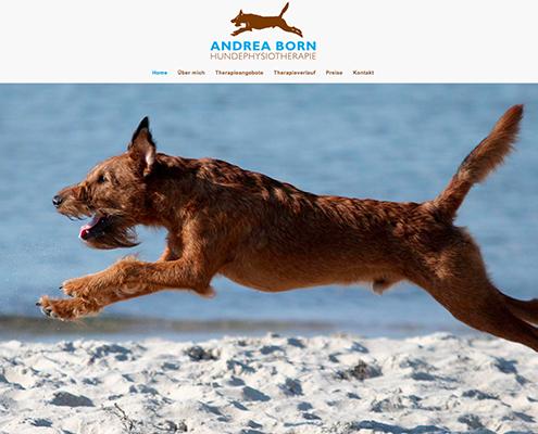 Bild Projekt Webdesign - für Andrea Born Hundephysiotherapie