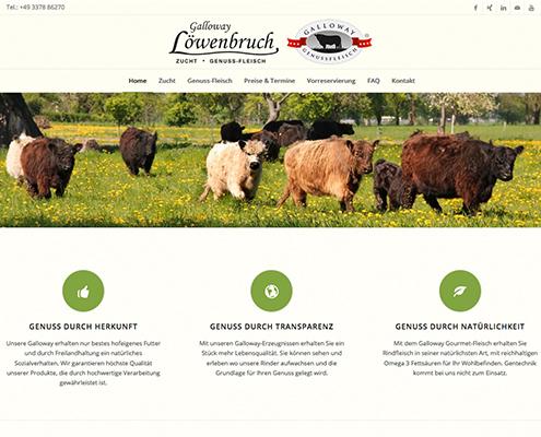 Bild Projekt Webdesign - für Galloway-Loewenbruch
