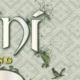 Projekt CD-Artwork für Einini - Album Fledgling - Digipack Vorschaubild